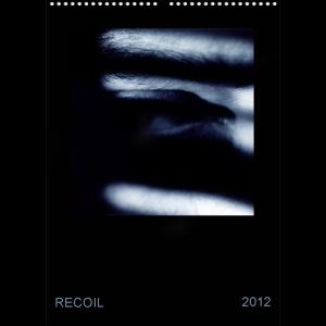Un DVD, un calendrier et surtout une boutique online pour Recoil (3/6)